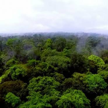Revisitando las descolonizaciones africanas: 50 años de la independencia de Guinea Ecuatorial